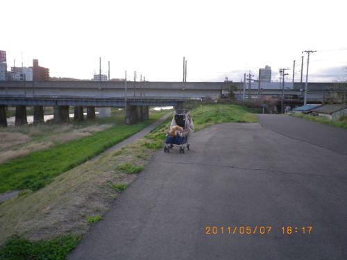 2011ゴールデンウィーク 広瀬側②
