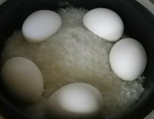 2011.5. ゆで卵(後)