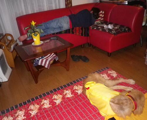 2011.6帰宅後グッタリチャンの2人