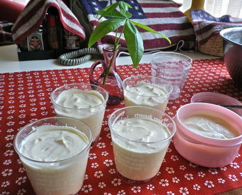 2011.7.ホイップクリームでバニラアイス ②
