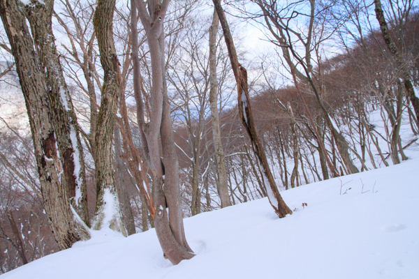 2013_0223_1_12.jpg