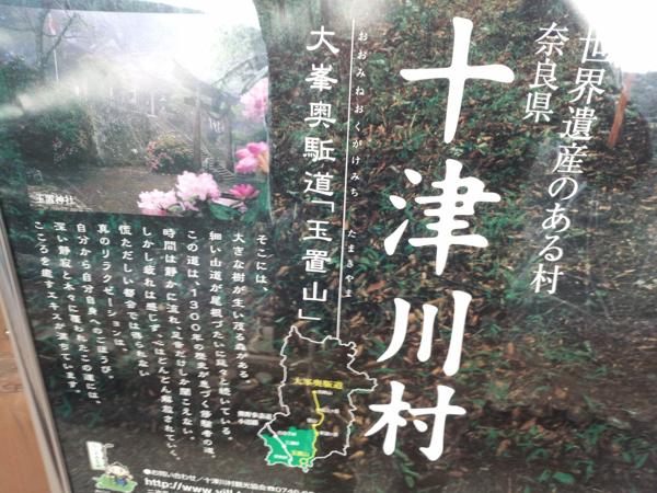 2013_0309_29.jpg