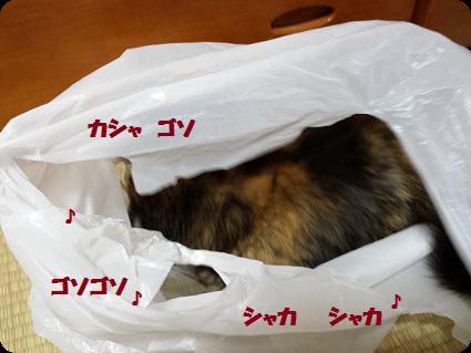 レジ袋イン2