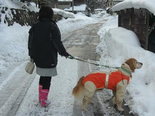 レオ雪散歩2