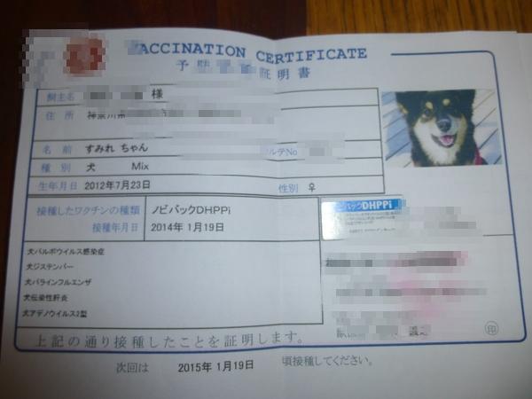 証明書が写真入りです。身分証明書みたい
