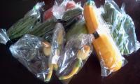 播磨坂マルシェの野菜