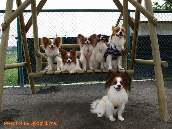 10-2_20120530020406.jpg