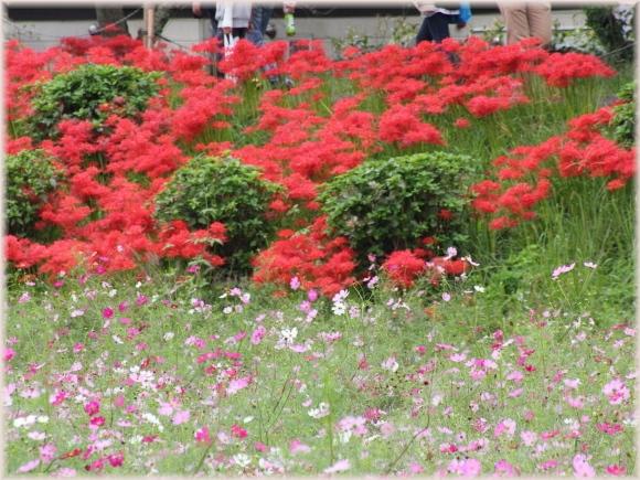 14-2_20121010072047.jpg