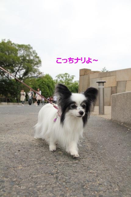 1_20120621003440.jpg