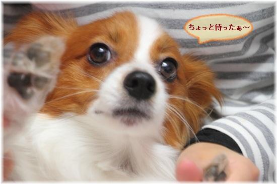 2_20120929121418.jpg