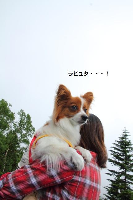 7_20120802082855.jpg