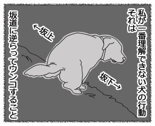 羊の国のラブラドール絵日記11月1日1