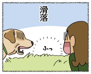 羊の国のラブラドール絵日記11月1日3