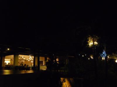 アロナビーチ「Amorita Resortのディナー」5
