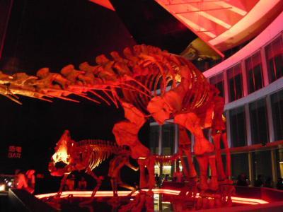 六本木ヒルズ「恐竜BAR」2