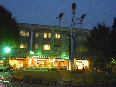 上野公園「上野グリーンサロン」1