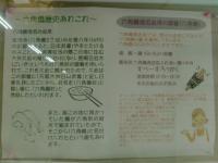 CIMG0341c.jpg