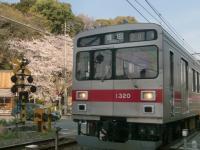 CIMG7996c.jpg