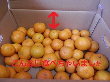 a_20141110.jpg