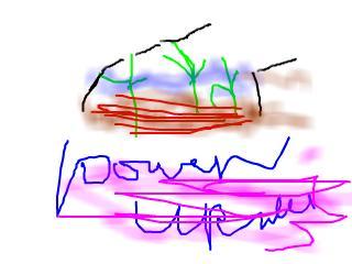 snap_hohoemiem_20109012537.jpg