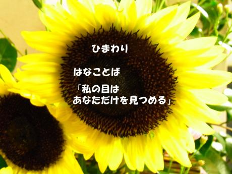 縺イ縺セ繧上j_convert_20100912005157
