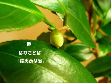 讀ソ_convert_20100912005125