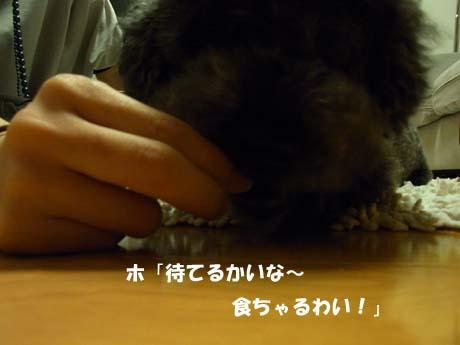 RIMG3395のコピー