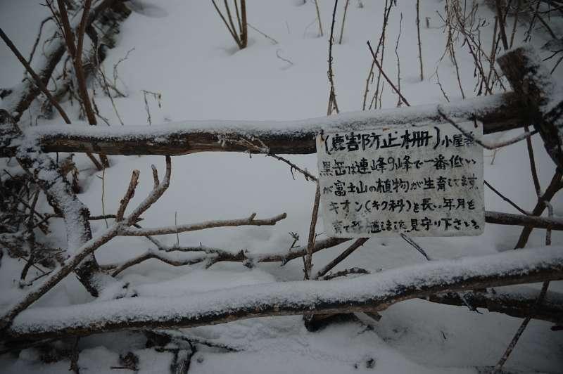 DSC_6542.jpg