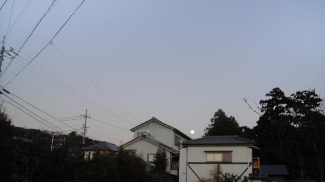 DSC01822.jpg
