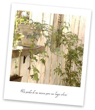 garden09144.jpg