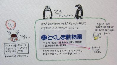 717-2.jpg