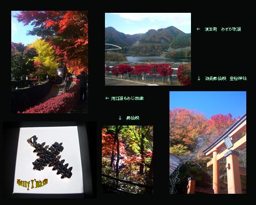 2011-11-25.jpg