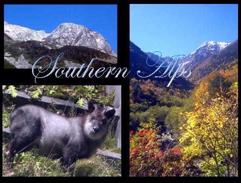 2012-10-25.jpg