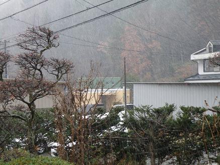 yuki1291.jpg