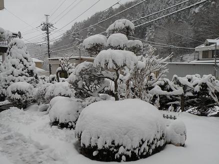 yuki202.jpg