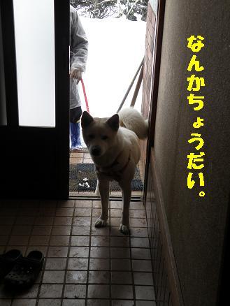 yuki203.jpg