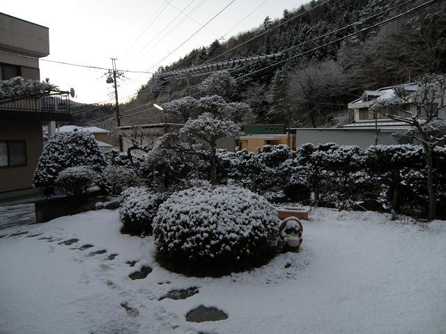 yuki281.jpg