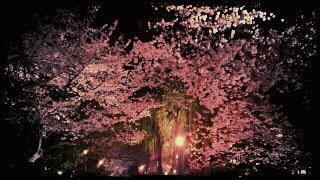 fc2blog_20120509225757e7d.jpg