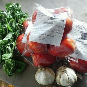 トマトソースセット1