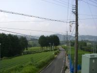 CIMG5283a.jpg