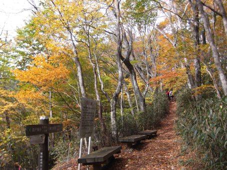 段戸湖~ねびそ岳2013,11,9 011