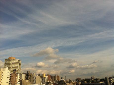 201105251.jpg