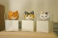 3cats1.jpg