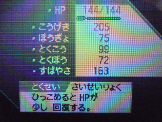 P1010387.jpg