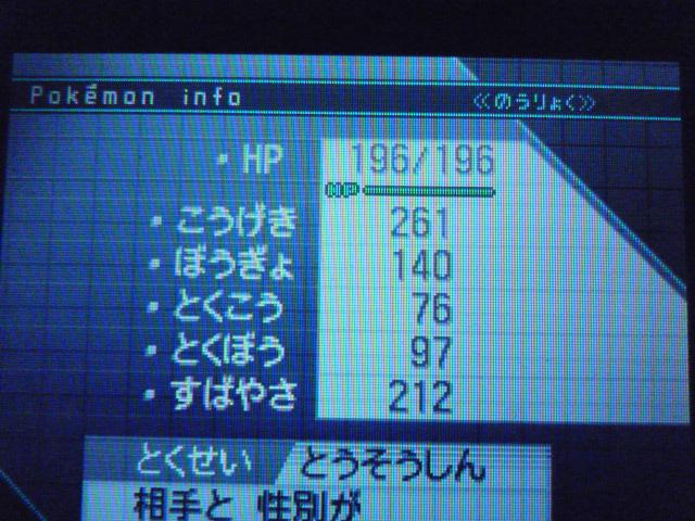 P1010397.jpg