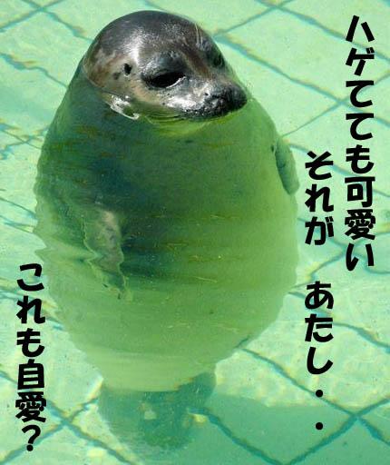 潜在意識 復縁 ブログ 14//