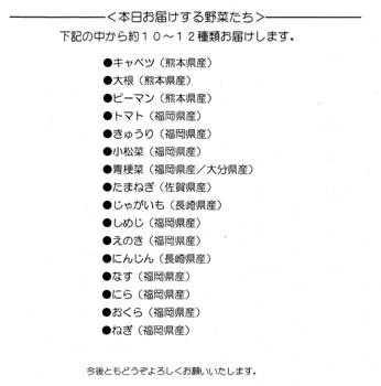 九州の野菜セット2