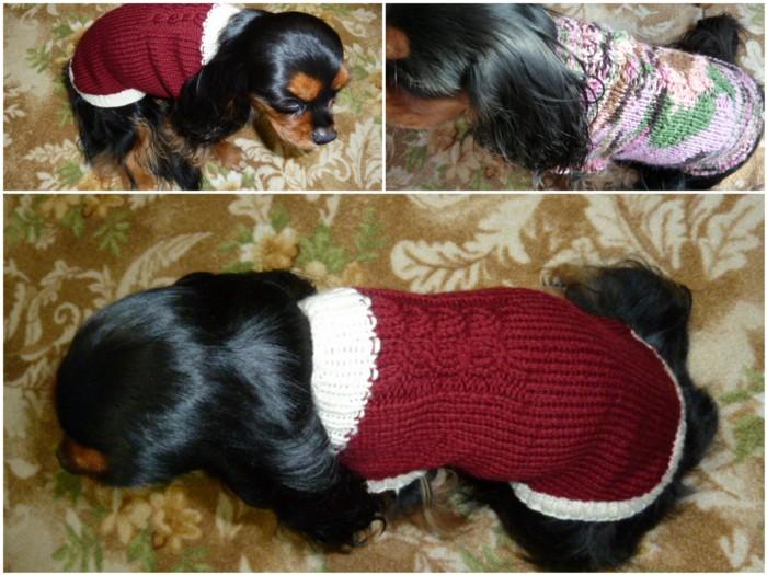 セーター似合うかな。。