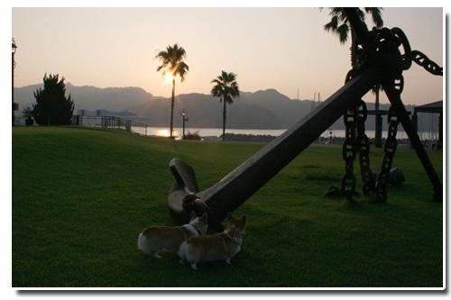 2010-0819サンセットマリーナ朝日