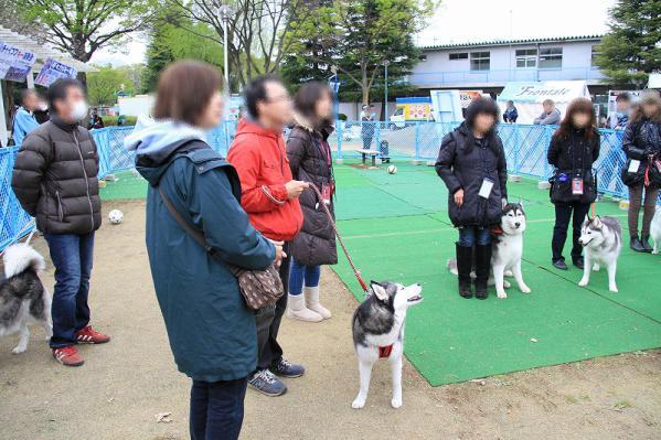 20130330_kawasaki_2 (3)